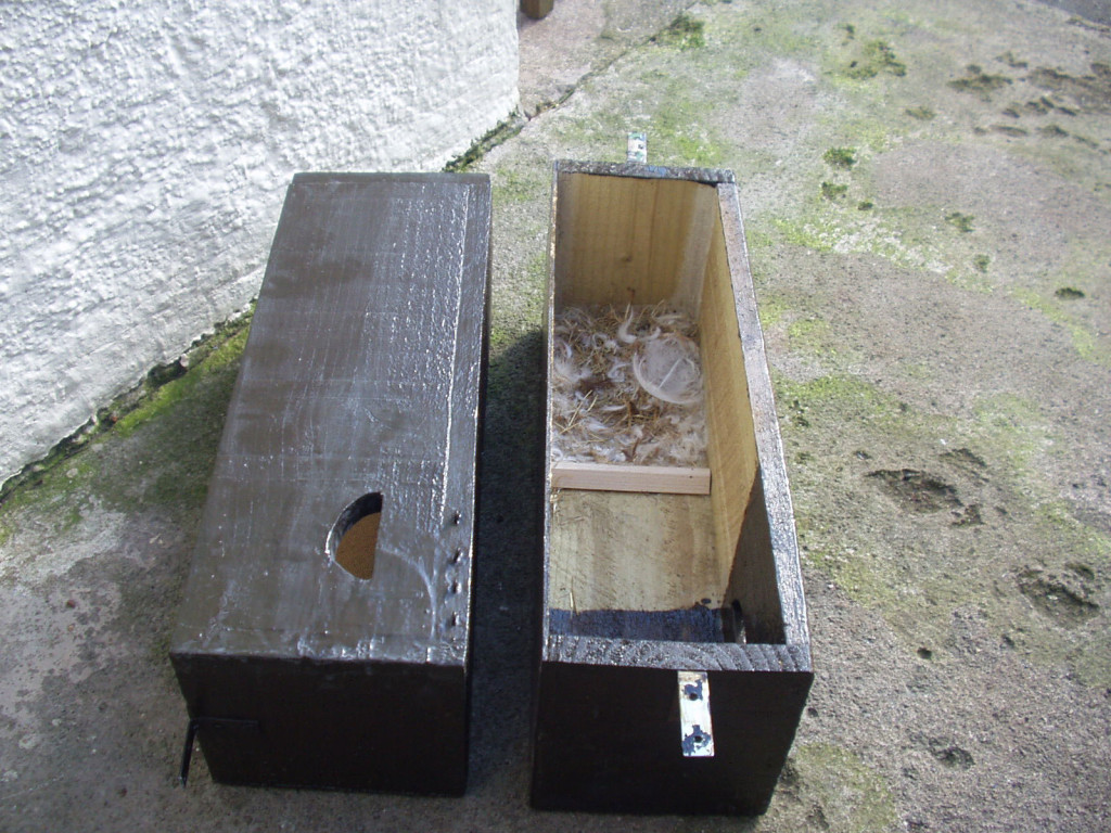 swift nest box 2005