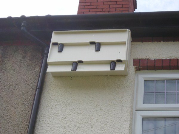 Swift Boxes with sections of drainpipe 2010