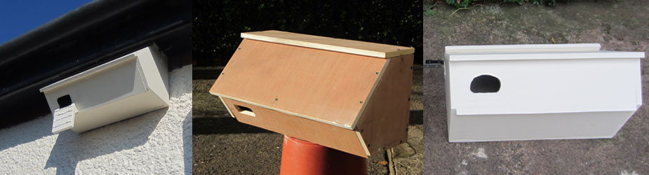 Swift Nest Box 2015